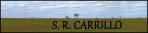 S. R. Carrillo