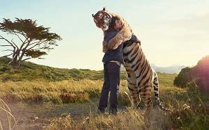 tiger_and_boy_friendship_wallpaper