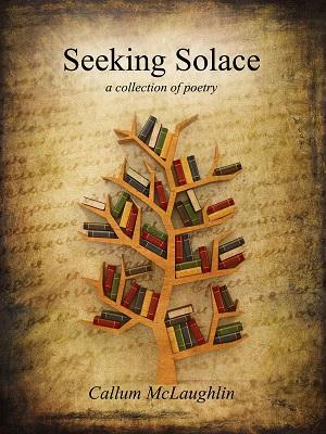 Seeking Solace by Callum McLuaghlin